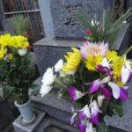 お墓参りの供花、造花でも問題ない?