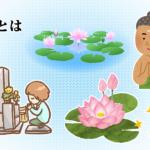 「蓮華(れんげ)」の種類と特徴を解説!花色で違う仏教的な意味とは?