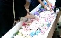 家族の想いが詰まった家族葬
