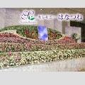 一般葬60名(60万プランベース)